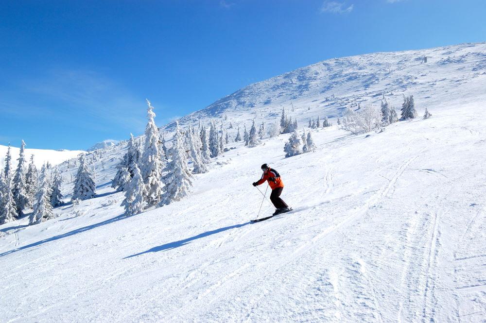 Фото: Лыжник на трассе в Словакии