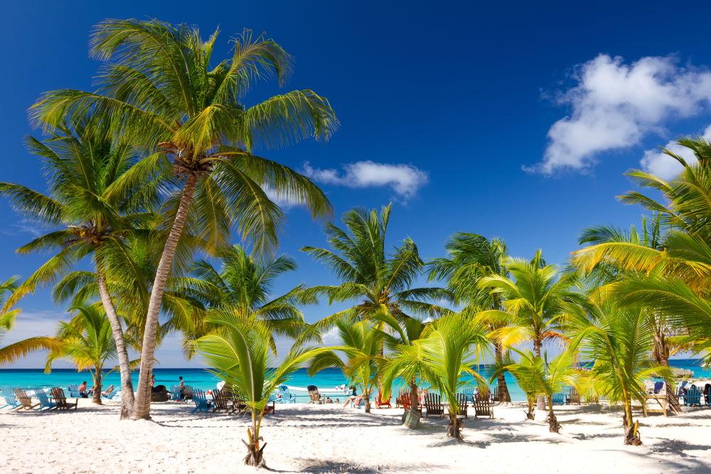Фото: Пляжный отдых в Доминикане
