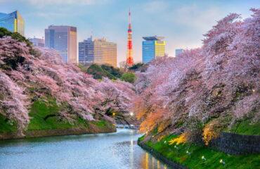 Фото: Достопримечательности Токио
