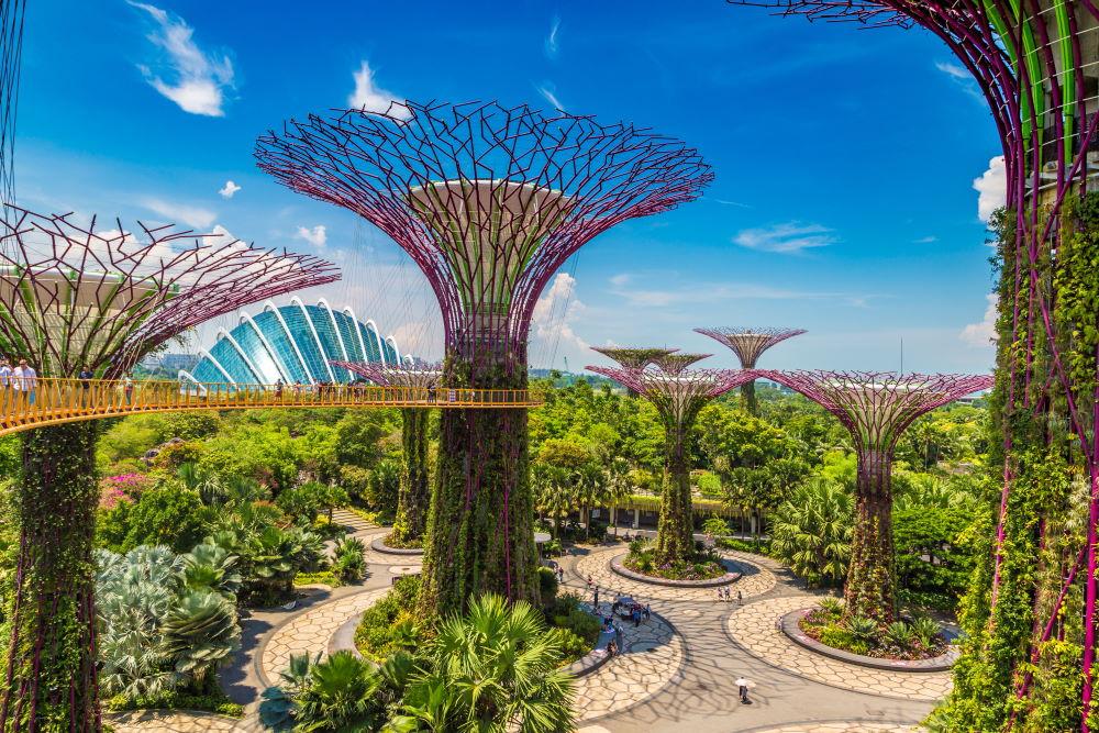Фото: Сады у Залива, Сингапур