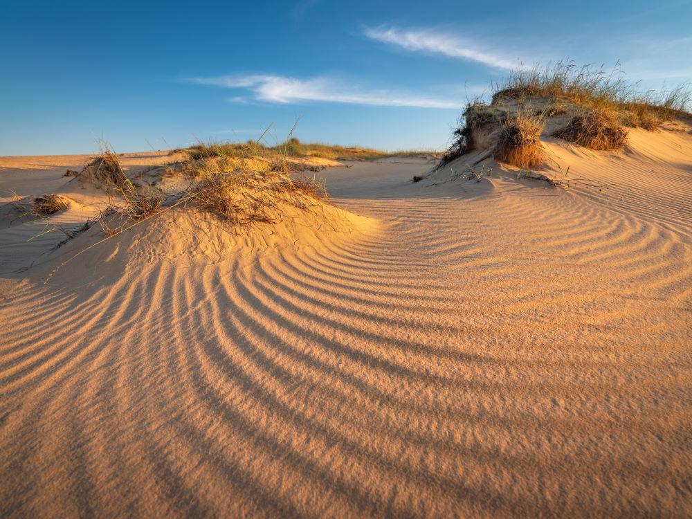 Фото: Алешковские пески