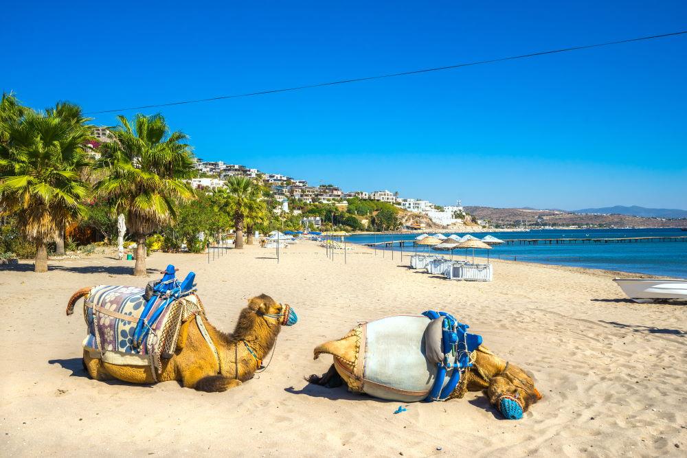 Фото: Верблюжий Пляж, Бодрум