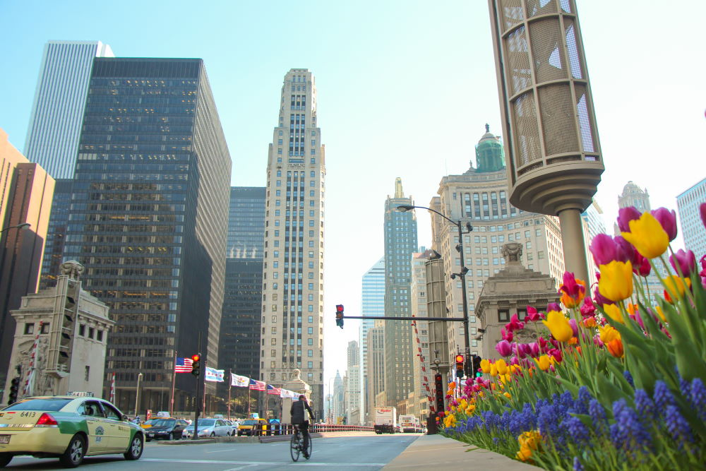 Фото: Великолепная миля в Чикаго