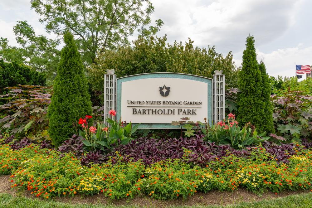 Фото: Ботанический сад США, Вашингтон