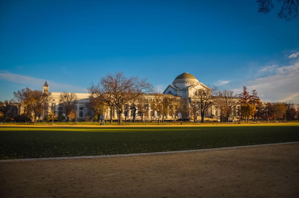 Фото: Национальный музей естественной истории в Вашингтоне